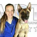 Alicia Beggs, Michigan Dog Training, Plymouth, Michigan