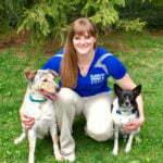 Brittany Walter, Michigan Dog Training, Plymouth, Michigan