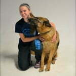 Michigan Dog Training, Michigan Dog Trainer, Plymouth, Michigan