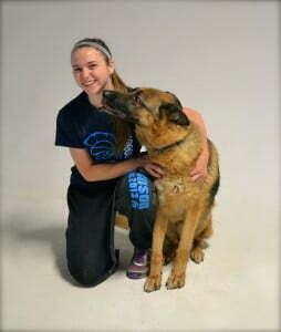 Michigan Dog Training, Michigan Dog Trainer, Plymouth, Michigan