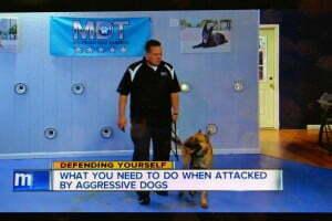 Michael Burkey, michigan Dog Training, Plymouth, Michigan, dog obedience, dog training