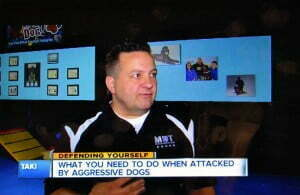 Michael Burkey, Michigan Dog Training, Channel 7 News, aggressive dogs