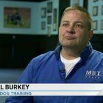 Michael Burkey, Michigan Dog Training, Channel 4 News, WDIV