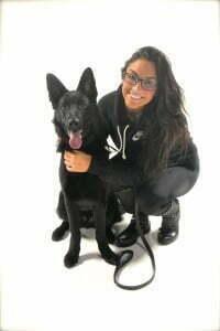 Michigan Dog Training, board and train, German Shepherd