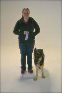 Michigan Dog Training, Canine Good Citizen Advanced
