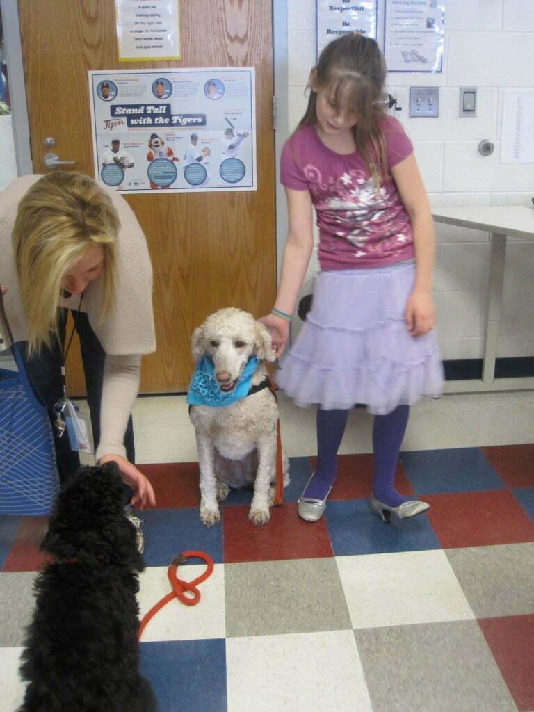 www.michigandogtraining.com, diabetic alert dog