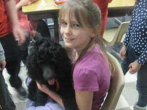 www.michigandogtraining.com, diabetic alert dog deomnstration for school children