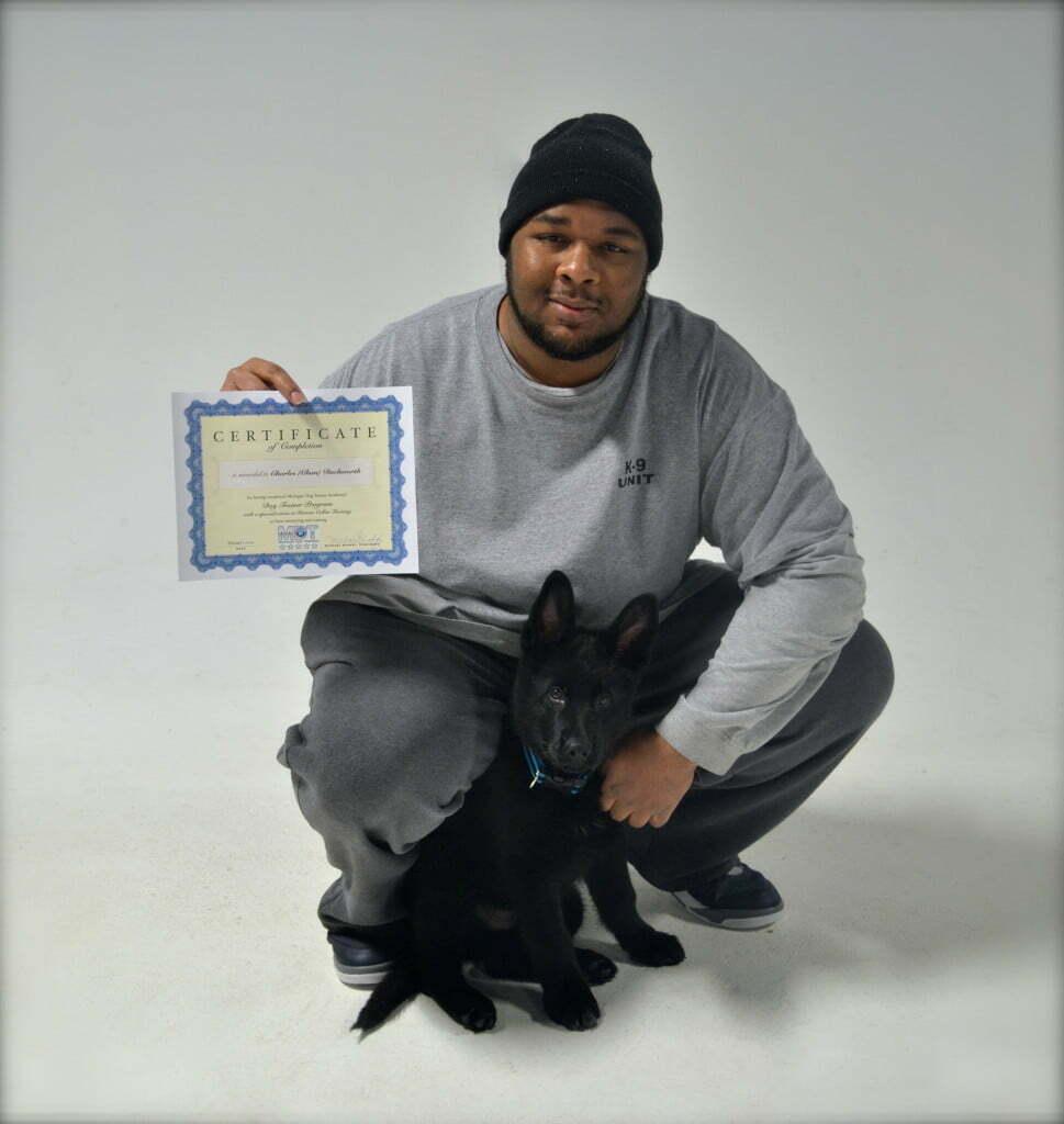 dog trainer, dog training school, dog training academy, Michigan Dog Training