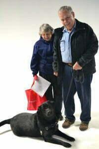New CGC star at Michigan Dog Training