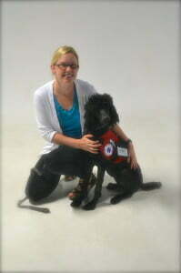 Michigan Dog Training, Diabetic Alert Dog, Canine Good Citizen, CGC, Standard Poodle
