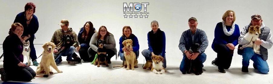 Puppy class, Puppy Obedience, dog training, puppy training, Michigan Dog Training