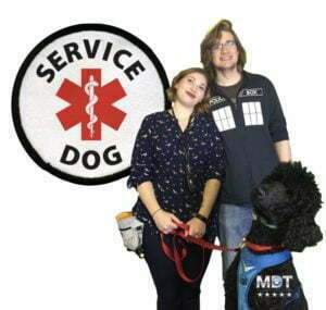 Diabetic Alert Dog, Service Dog, DAD, Diabetic Alert Service Dog, Michigan Dog Training, Standard Poodle, Plymouth, Michigan