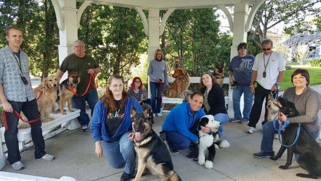 Michigan Dog Training, Plymouth, Michigan, Perfect Practice dog group class, dog training