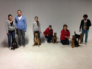 Michigan Dog Training, puppy obedience, puppy manners, good puppy, pup, puppy class