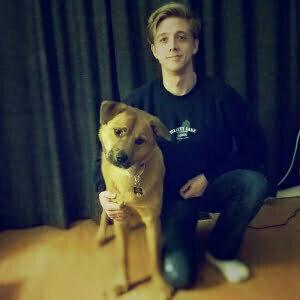 Michael Webber, Dog Trainer, Michigan Dog Training