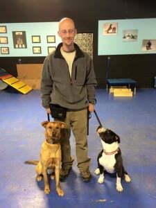 Michigan Dog Training, Plymouth, Michigan, Pitt Bull finds new home