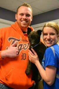 Michigan dog training, puppy classes, Dutch Shepher