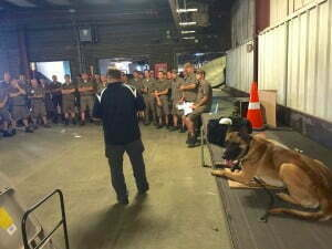 Michigan Dog Training, Michael Burkey, Dog Bite Prevetion tips, United Parcel Service, UPS, Belgian Malinois