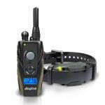 remote collar, e-collar, Michigan Dog Training, E-Collar, dog training