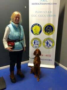 Saoirse, Michigan Dog Training, Michael Burkey, Diabetic Alert Dog, Service Dog, Puppy S.T.A.R., puppy obedience, puppy training, plymouth, MI