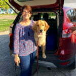 Michigan Dog Training, Golden Retriever, Canine Good Citizen, CGC, Plymouth, Michigan