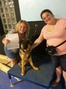 Michigan Dog Training, Puppy Obedience, Puppy Training, pup, puppy, dog training, dog