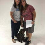 Michigan Dog Training, Plymouth, Michigan, Canine Good Citizen, CGC, Trick Dog