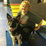 Michigan Dog Training, Plymouth, Michigan, Trick Dog, Canine Good Citizen, CGC, Puppy STAR