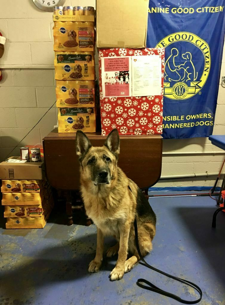 Michigan Dog Training, Christmas presents for dogs, dog shelter, animal shelter, Friends for Animals of Metro Detroit