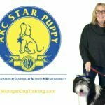 puppy training classes, Puppy STAR, Michigan Dog Training, Plymouth, Michigan, puppy obedience, puppy training
