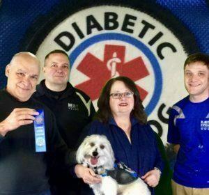 Service Dog, Diabetic Alert Dog, Michigan Dog Training, Plymouth, Michigan