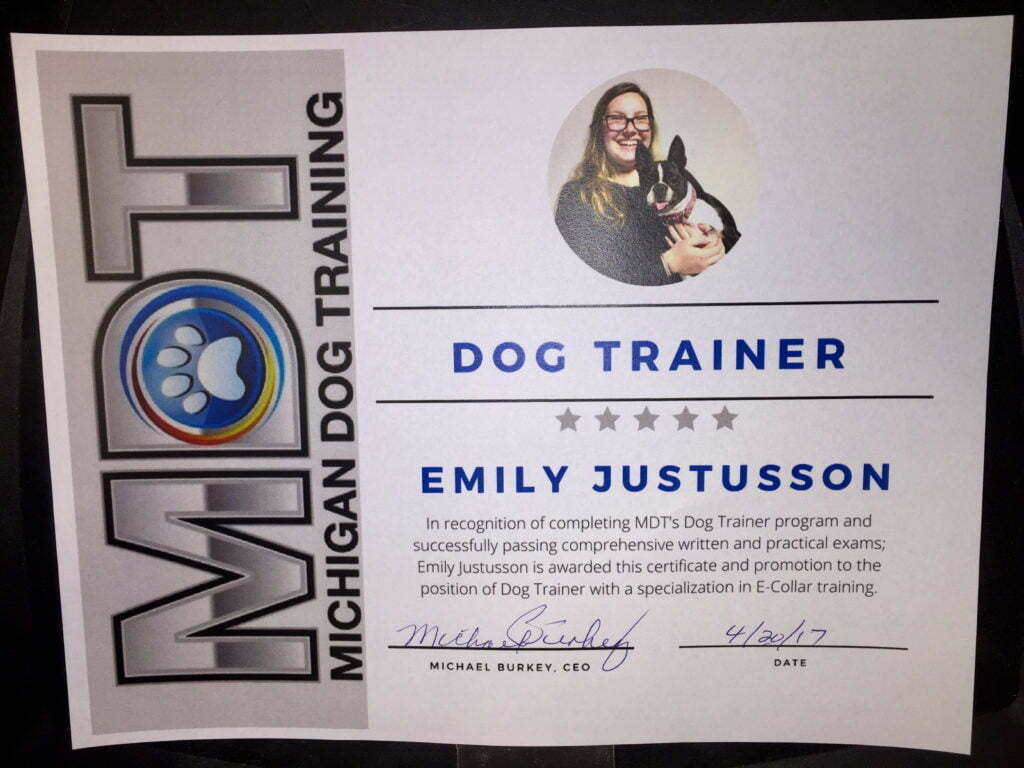 Emily Justusson, Dog Trainer, Michigan Dog Trainer