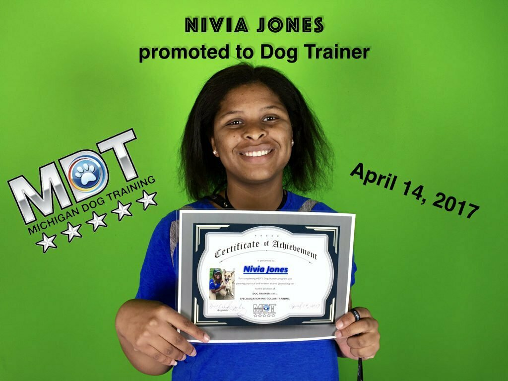Nivia Jones, Dog Trainer, Michigan Dog Trainer, Michigan Dog Training, Plymouth, Michigan