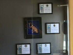 Michigan Dog Training, Employee of the Month Wall