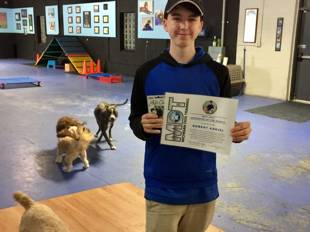 Michigan Dog Training, Robert Ankiel, Employee of the Month, Plymouth, Michigan