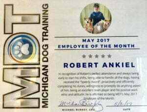 Robert Ankiel, Michigan Dog Training, Plymouth, Michigan