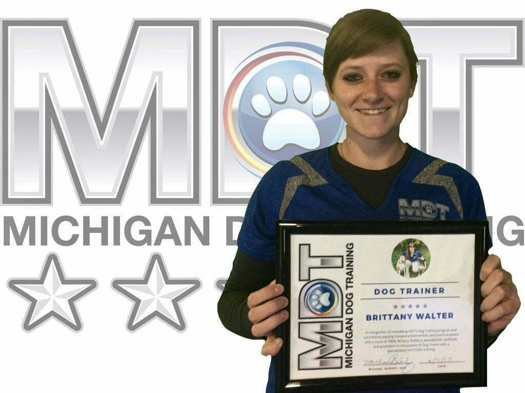 Brittany Walter, Dog Trainer, Michigan Dog Training, Plymouth, Michigan