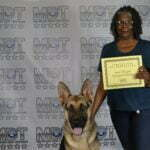 Soraya Vaughn, German Shepherd Dog, CGCA, Michigan Dog Training, Plymouth, Michigan