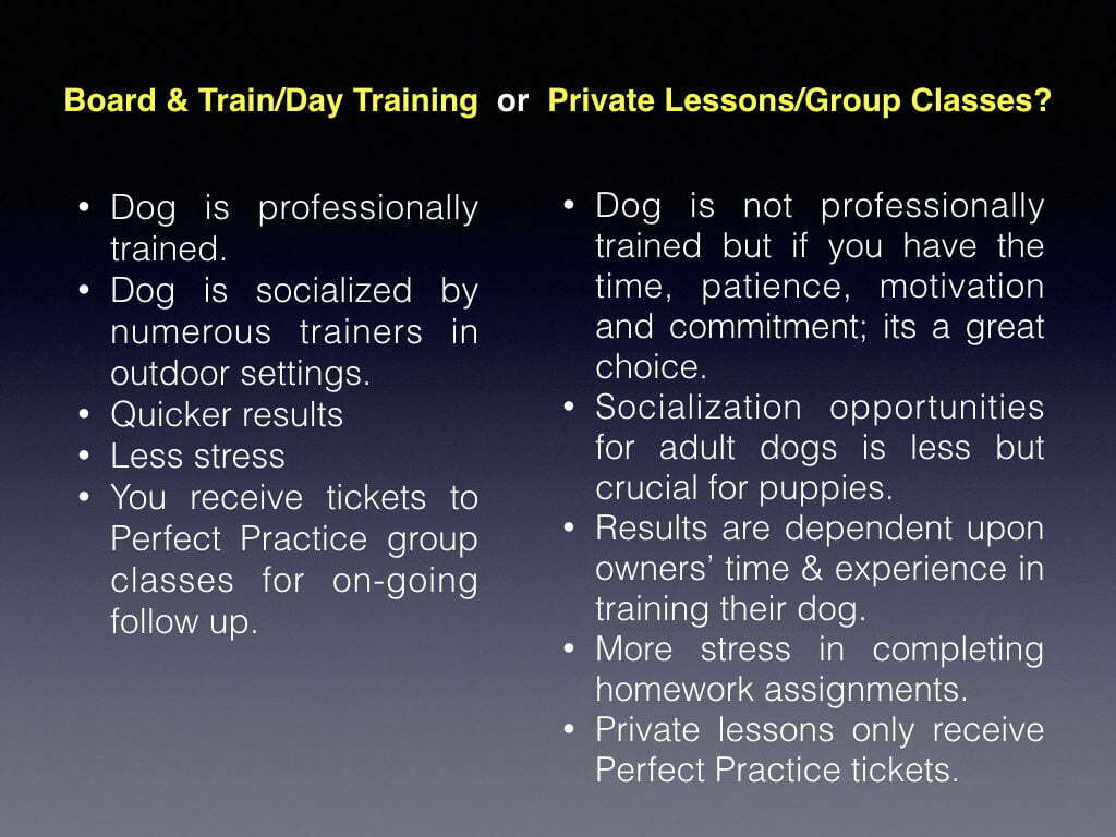 Michigan Dog Training, Board and Train, Day Training