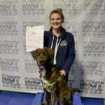 Michigan Dog Training, puppy, dog